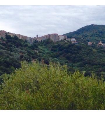 Randonnées en Corse : vacances sportives et des vues exceptionnelles.