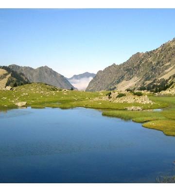 Séjour aux Pyrénées