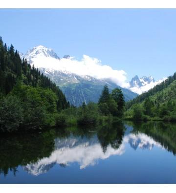 Découverte du Mont Blanc
