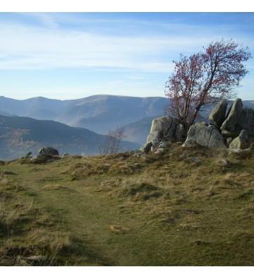 La plus belle zone naturelle des Vosges