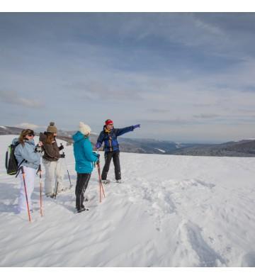 Sortie raquettes à neige sur la chaume de Sérichamp   sur demande