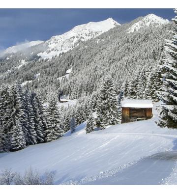 Journée en raquettes à neige au Markstein et au Storchenkopf