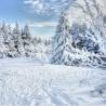 Balade en raquettes à neige au Thannerhubel
