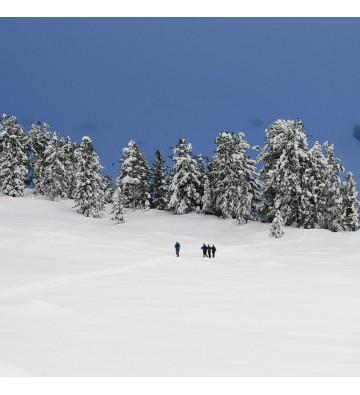 Sortie raquettes à neige au Lac de la Lauch   sur demande