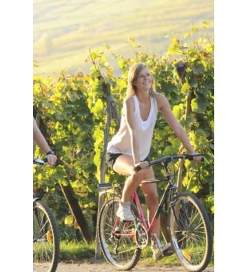 Découvrez l'Alsace en balade à vélo