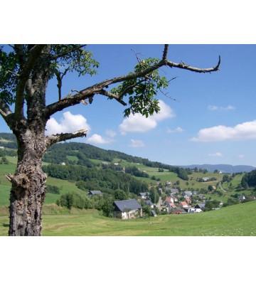 Randonnée au pays Welche
