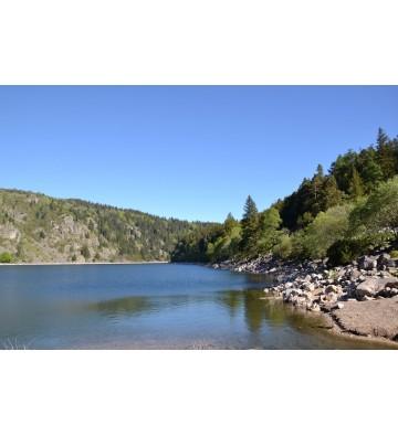 Les 4 lacs -un Patrimoine naturel