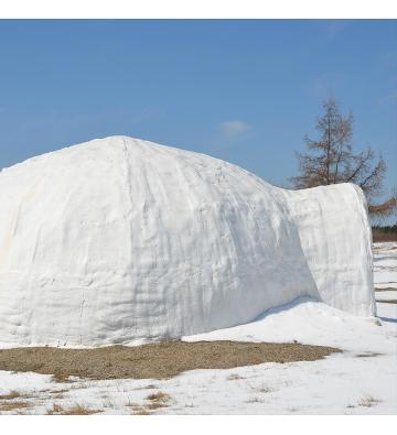 Team building Vosges activités neige et sécurité en montagne !