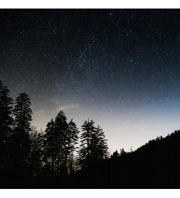 Une balade à travers les étoiles