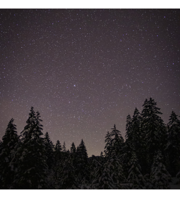 Balade en raquettes à neige à la découverte du ciel étoilé au Markstein