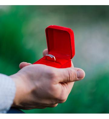 Une demande en mariage hors du commun !