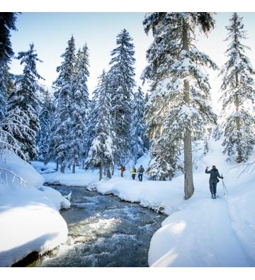 Fêter un Nouvel An inoubliable au Col du Bonhomme