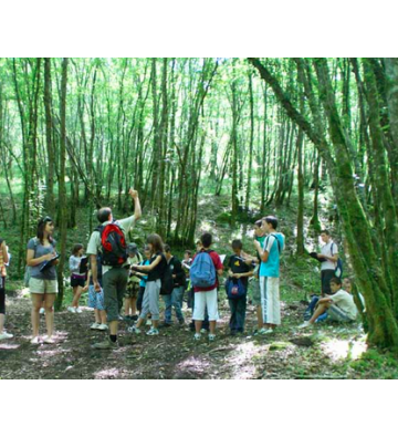 Sortie scolaire à la montagne: aux cimes du Rossberg
