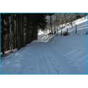 Week-end montagnard dans les Hautes-Vosges, spécial comité d'entreprise.