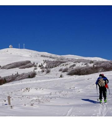 Sortie Raquettes à neige sur les Hauts de Felsach