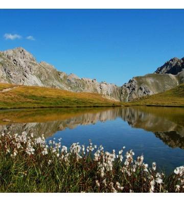 Ressourcez-vous au cœur du parc naturel régional du Queyras.