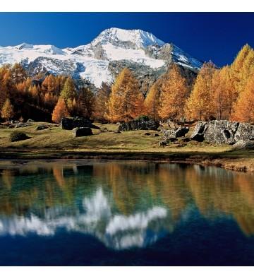 Randonée au pays du Mont Blanc et balénothérapie.